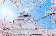漫步日本东北第一名城◎鹤城 日本东北地区第一名城,也是福岛会津的象征。 建于400年前,由于天守阁的