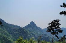 沂蒙好风光,山顶环山木栈道视野。