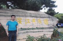 滨江花世界,月季最袭人。