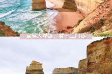 【自驾大洋路,看十二门徒美景】 自驾大洋路最经典的景色估计要数十二门徒了。十二门徒岩位于澳大利亚墨尔