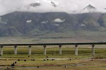 出了拉萨市,也是青藏线上的第一座雪山,念青唐古拉山。雪山下的青藏铁路是一道风景线。为念青唐古拉山面前