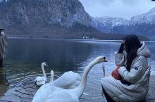 """哈尔施塔特(Hallstatt)是我圣诞假期最期待的一站,它在奥地利,被誉为""""欧洲最美小镇""""和""""世界"""