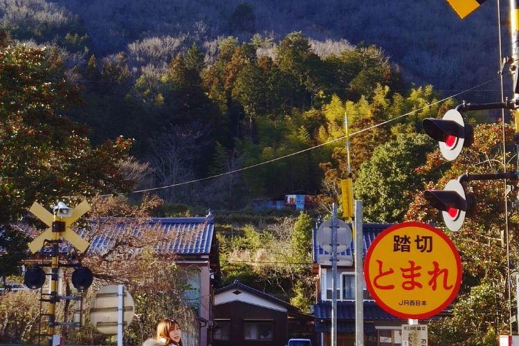 Takeda Castle Ruins3