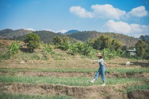 Mae Hong Son,Recommendations