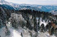 日本岐阜县高山市新穗高坐双层缆车上山看雪山