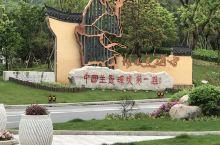 中国生态环境第一县~庆元县
