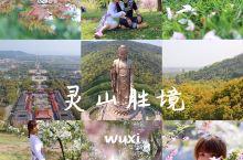 灵山胜境也算是来无锡比打卡的一个景区了...包括大佛、梵宫、五印坛城等...如果每个都想去到...需