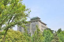 每次来武汉都想到武大看看,为了感受它的文化气息,为了重温美妙的校园时光,也是为了那颗永远年轻的心。就