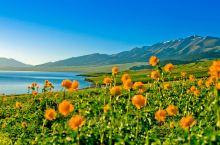 壮美天山草原