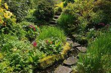 隐藏在百年校园内的美丽花园——Winterbourne House & Garden  闺蜜曾在伯明