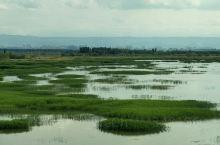 新疆玛纳斯国家湿地公园