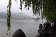 因为龙门石窟,所以来了洛阳。 被暴雨洗涤后的河水上漂满了浮萍,雾蒙蒙的别有一番滋味…… 携程导游的讲