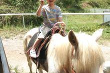 骑着马儿,看着沿途风景
