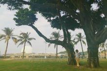 珠海,极美的海滨之城,不来会遗憾,适合居住和浪漫的邂逅之地。