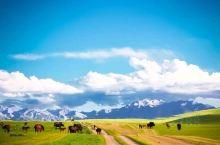 焉支山,中国名山。又称胭脂山、燕支山、删丹山、大黄山、青松山、瑞兽山。坐落在河西走廊峰腰地带的甘凉交