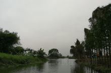 通往古劳水乡的路很窄。节假日人很多,要排队坐船。这里景色和娱乐性一般吧。