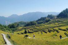 云和梯田集旅游休闲、摄影观光、民俗欣赏于一体的云和县首批4A级旅游景区。景区位于崇头镇,距县城5公里
