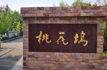 淮安桃花坞,秋天的风景,感觉一园桃树林,应该在每年四五月份来看桃花,满园桃花景观最佳!