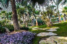 """面积颇大的植物品类公园,值得打卡! 辰山位列松郡九峰,称作""""云间九峰""""之一,属于佘山山系,据明代董其"""