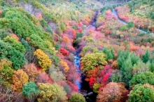 每年秋天都要来本溪看红叶,今年天气热红叶不太红,我们航拍确欣赏到另外一种美景五彩斑斓!
