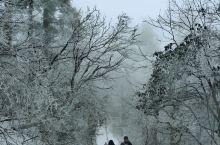 一早从报国寺搭车到五显岗,车程40分钟,8点开爬,18点到达灵觉寺(海拔3000米)。  冬天爬峨眉