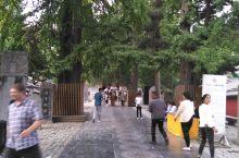 在少林寺院中,可以看到在地上刻有在佛教中是清净、圣洁、吉祥象征的莲花的,听导游说,看到刻有莲花的甬路
