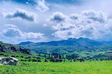 新西兰南岛有丰富的自然风光,空气清新,高山草原,各个小镇点缀其中