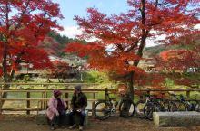 日本东部香岚溪红叶每年秋季吸引许多游客前去观赏。依山傍水,红叶漫山。老年游客,年轻人,孩子好不热闹!