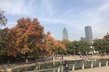 中山公园!