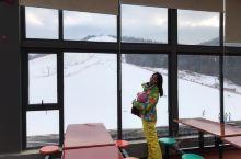 """神农架4大滑雪场,攻略请收好   念雪山飞狐,思林海雪原!   今冬滑雪,神农架见!   """"冰清"""