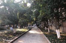 中国科学院南京古生物科学研究所,在南京玄武区北京东路39号,漫步期间可以观散落于路边的各种地貌结构,