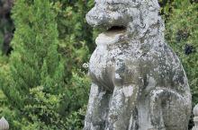 懿德太子墓和永泰公主墓前的蹲狮(懿德太子墓图1-2,永泰公主墓图3-4)