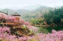 常德桃花源旅游区位于湖南省桃源县西南15公里的水溪附近,距常德市34公里。前面有滔滔不绝的沅江,后面