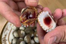 美味的乐清花蛤,开水烫10秒,半生半熟最好吃