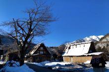 去年恰逢大雪过后,眼前的木屋,倒挂的冰溜,屋顶积雪的升华,如同一座童话世界。碧蓝的天空,皑皑白雪,衬