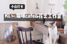 吉隆坡隐藏cafe&花艺工作室FLOSCAFÉ  最悠闲的午后有猫有咖啡有花儿  这家超隐匿的咖啡