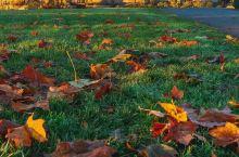 秋天的回忆