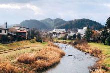 整条宫川河上最靓的桥  宫川河上三座桥里最靓的一条~也是游客们最爱的一条。  去往日枝神社的路上偶遇