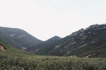 陆羽古道,位于湖州妙西霞幕山景区,茶圣陆羽隐居地,中国最原始的古道之一,探寻千年茶道之旅。弯道多,风