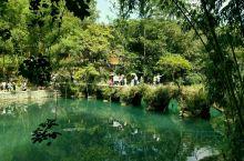 贵州荔波的小七孔景区的美超出预期。早就听说贵州的山水很美,身临其境还是被震撼到了。水是那样绿,真的像