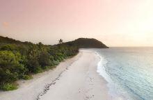 热带雨林和大堡礁