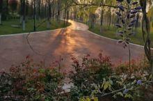 汤阴县汤河国家湿地公园,是一家免费的景区,依河而建,鸟语花香。