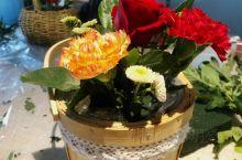 母亲节花插做口红