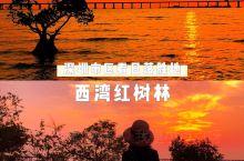 深圳最美日落胜地|深圳西湾红树林湿地公园     在深圳最西端延绵的海岸线上,大海、夕阳、飞机、长桥