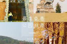 【最美家乡】上海松江美丽又免费的公园 等你来哦 作为一个土著忍不住赞美一下上海的美丽郊区-松江,推荐
