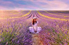 《紫色梦幻》拍摄地点:Lavandes Angelvin, 04210 Valensole,在d6