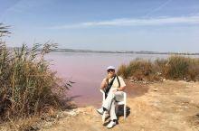 特拉维哈粉红湖,是还未开发的景区。太阳越烈湖色越红。