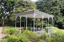 新加坡植物园美呀!满眼的绿!处处是美景!