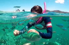 疫情结束,就去喂鱼。 在上帝水族馆幸福感满满! 斐济也封国了,海也不能下了,我——堂堂一