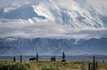Denali 国家公园的雪山真的美到让人窒息